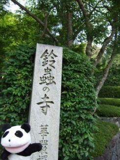 090鈴虫寺前.jpg